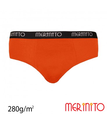 Men's briefs Thermoplus+  from 100% merino wool | 280 g/m2